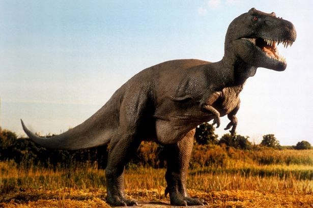 picture t-rex standing among field grass