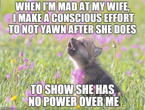 Text - Text - WHEN IM MAD AT MY WIFE IMAKEA CONSCIOUS EFFORT TO NOT YAWN AFTER SHE DOES TO SHOW SHE HAS NO POWER OVERME mgfip.com