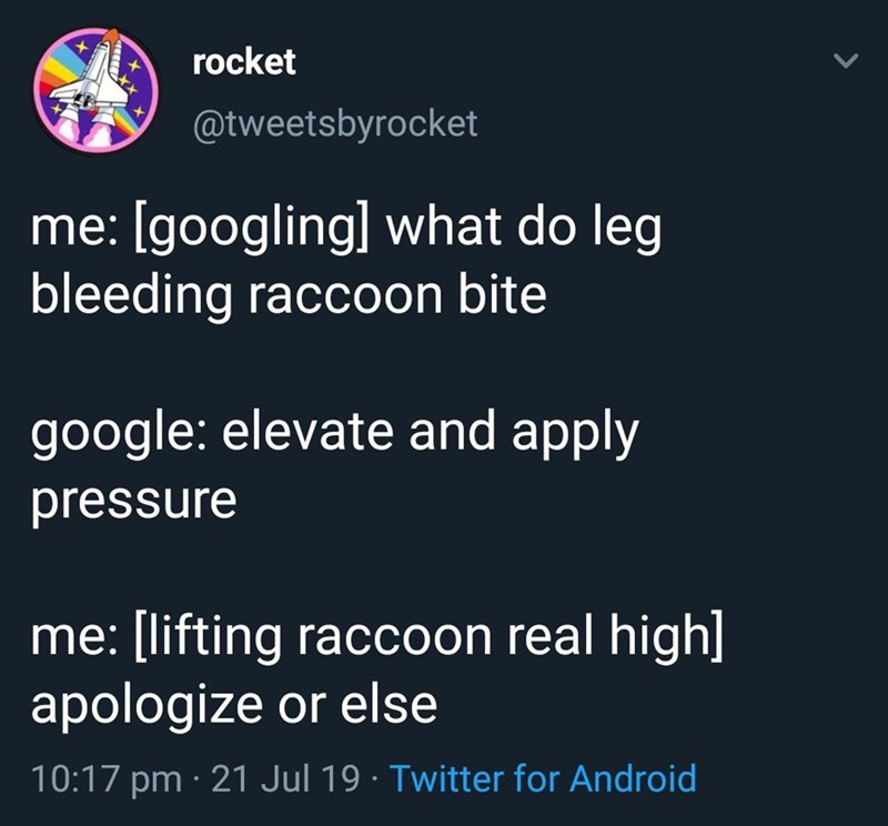 Text - rocket @tweetsbyrocket me: [googling] what do leg bleeding raccoon bite google: elevate and apply pressure me: [lifting raccoon real high] apologize or else 10:17 pm 21 Jul 19. Twitter for Android