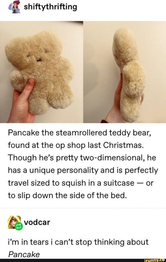 Text - shiftythrifting Pancake the steamrollered teddy bear, found at the op shop last Christmas. Though he's pretty two-dimensional, he has a unique personality and is perfectly travel sized to squish in a suitcase or to slip down the side of the bed vodcar i'm in tears i can't stop thinking about Pancake ifunny.co