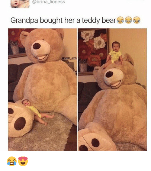 Teddy bear - @brina lioness Grandpa bought her a teddy bear Gwill ent