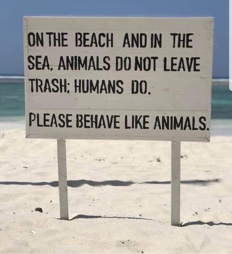 animal memes - 9357080064