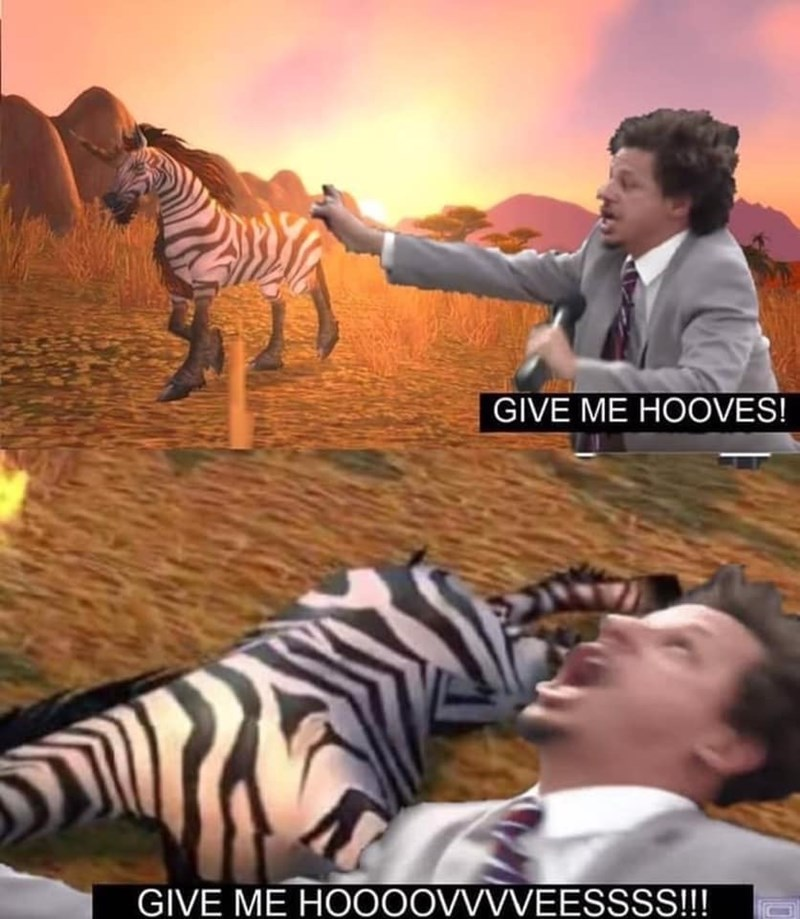 Zebra - GIVE ME HOOVES! GIVE ME HO0OOVVVVEESSSS!!!