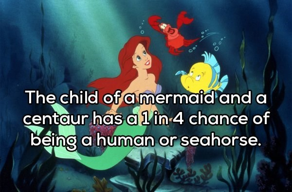 Animated cartoon - Oo. The child of a mermaid and a centaur has a1in 4 chance of being a human or seahorse.