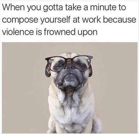 Text - Dog - When you gotta take a minute to compose yourself at work because violence is frowned upon