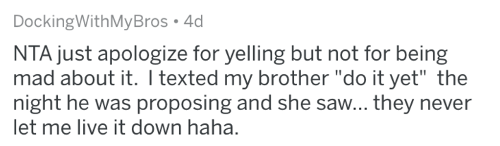 """Text - DockingWithMyBros NTA just apologize for yelling but not for being mad about it. I texted my brother """"do it yet"""" the night he was proposing and she saw... they never let me live it down haha."""