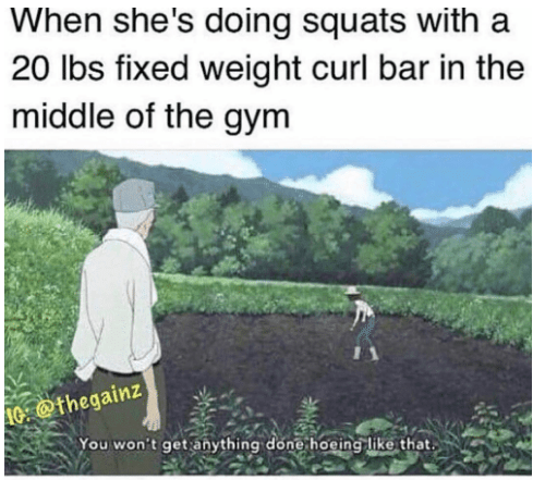 Text - When she's doing squats with a 20 lbs fixed weight curl bar in the middle of the gym 0 @thegainz You won't get anything done hoeing like that