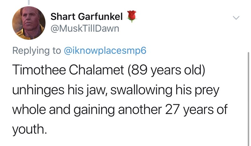 Text - Shart Garfunkel @MuskTillDawn Replying to @iknowplacesmp6 Timothee Chalamet (89 years old) unhinges his jaw, swallowing his prey whole and gaining another 27 years of youth