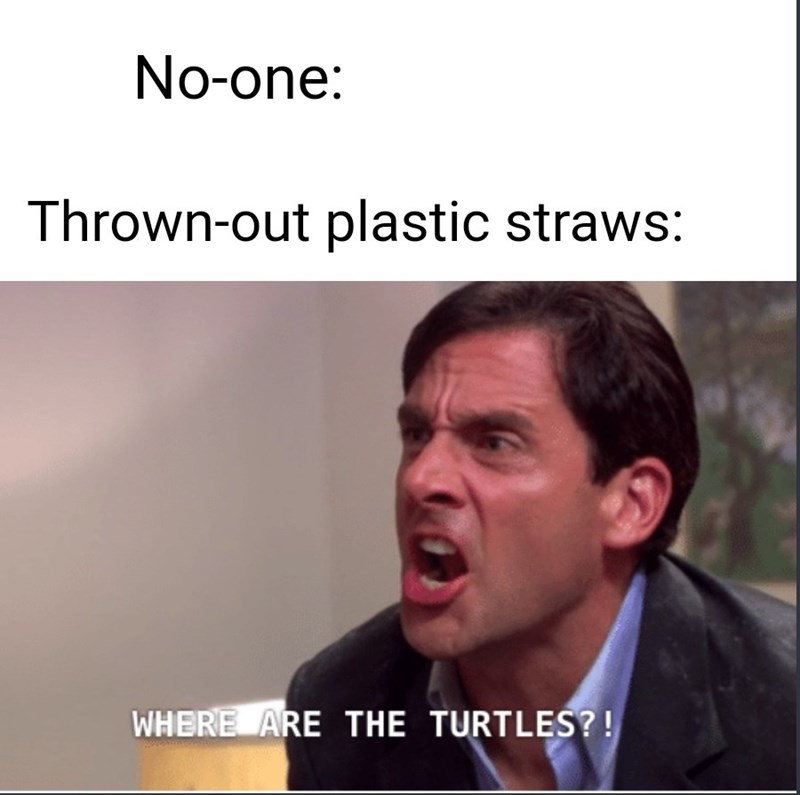 Facial expression - No-one: Thrown-out plastic straws: WHERE ARE THE TURTLES?