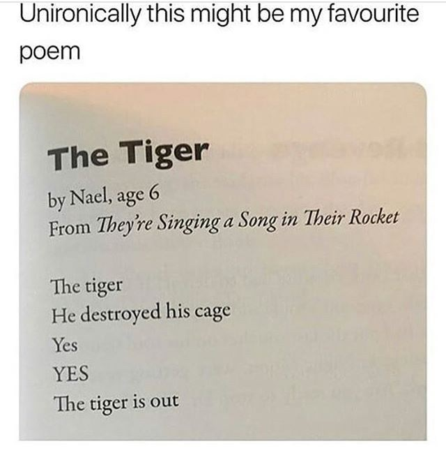 Text - Unironically this might be my favourite poem The Tiger by Nael, age 6 From They're Singing a Song in Their Rocket The tiger He destroyed his cage Yes YES The tiger is out