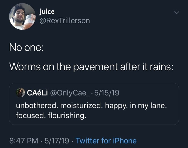 Text - juice @RexTrillerson No one: Worms on the pavement after it rains: CAéLi @OnlyCae_ 5/15/19 unbothered. moisturized. happy. in my lane. focused. flourishing. 8:47 PM 5/17/19 Twitter for iPhone