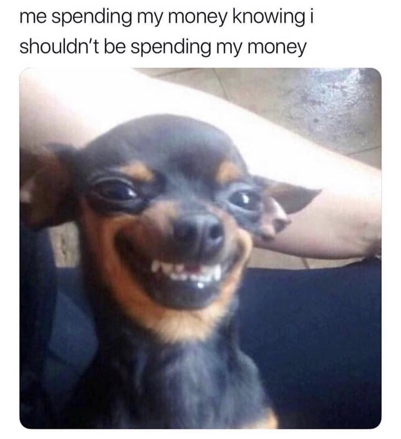 Dog - me spending my money knowing i shouldn't be spending my money