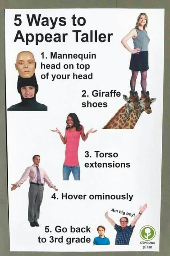 Text - Poster - 5 Ways to Appear Taller 1. Mannequin head on top of your head 2. Giraffe shoes 3. Torso extensions 4. Hover ominously Am big boy! 5. Go back to 3rd grade obvious plant