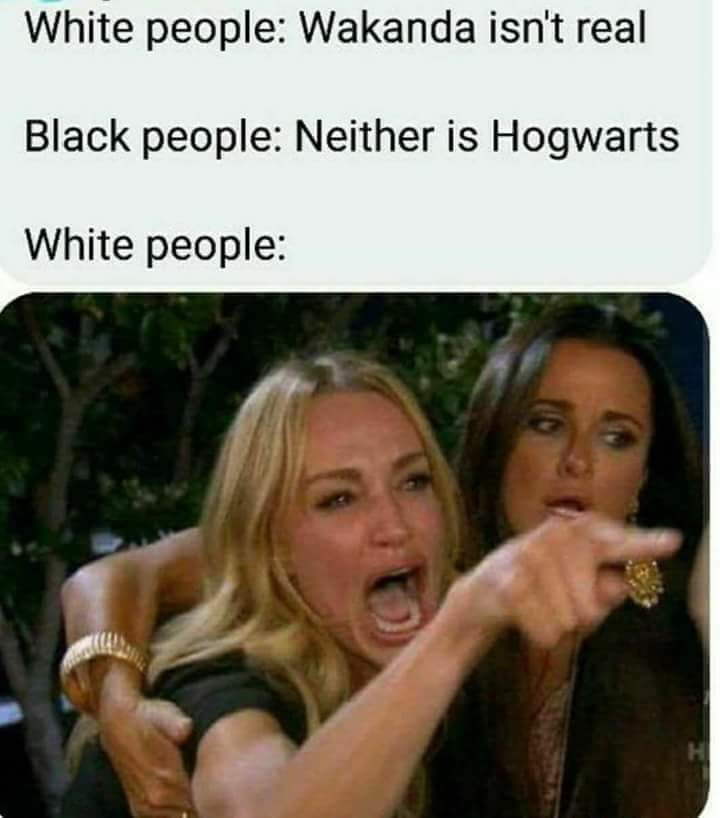 Facial expression - White people: Wakanda isn't real Black people: Neither is Hogwarts White people: H