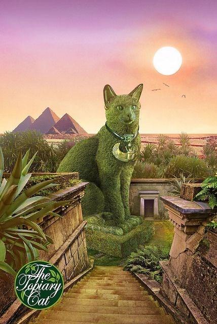 Green - Oararg Cat