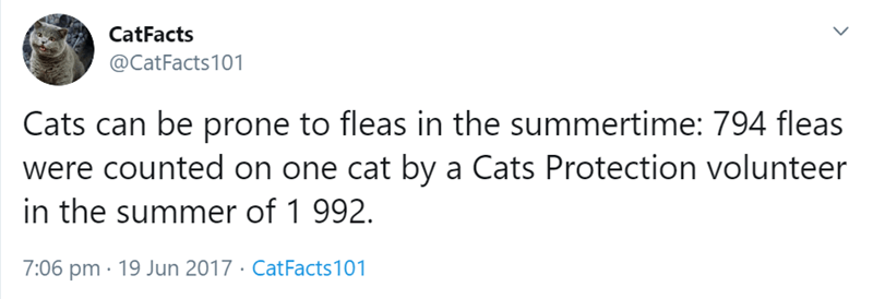 Text - CatFacts @CatFacts101 Cats can be prone to fleas in the summertime: 794 fleas were counted on one cat by a Cats Protection volunteer in the summer of 1 992 7:06 pm 19 Jun 2017. CatFacts101