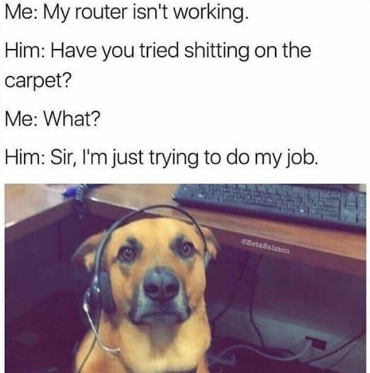 Dog - Me: My router isn't working. Him: Have you tried shitting on the carpet? Me: What? Him: Sir, I'm just trying to do my job. Betaßalmon