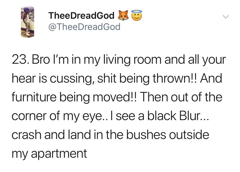 Text - TheeDreadGod @TheeDreadGod 23. Bro I'm in my living room and all your hear is cussing, shit being thrown!! And furniture being moved!! Then out of the corner of my eye.. I see a black Blur... crash and land in the bushes outside my apartment