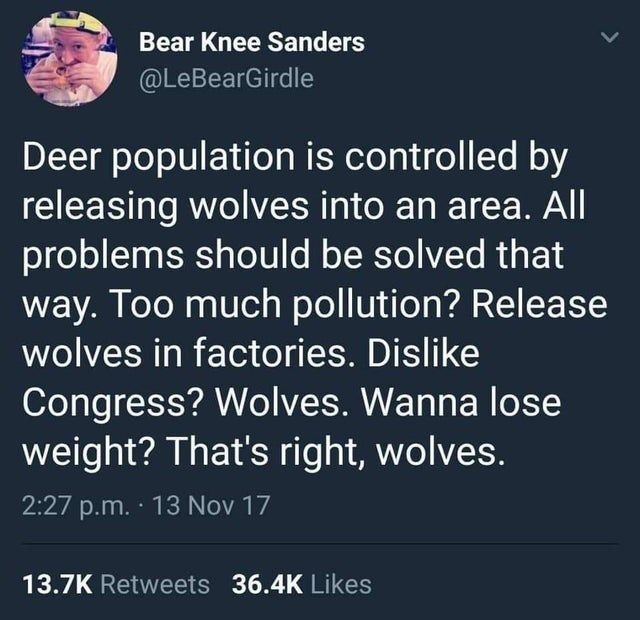 Text - Bear Knee Sanders @LeBearGirdle Deer population is controlled by releasing wolves into an area. All problems should be solved that way. Too much pollution? Release wolves in factories. Dislike Congress? Wolves. Wanna lose weight? That's right, wolves. 2:27 p.m. 13 Nov 17 13.7K Retweets 36.4K Likes