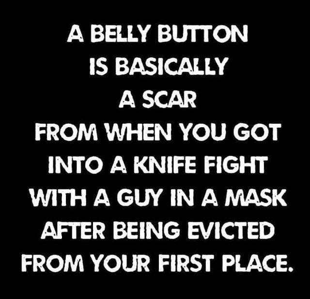 Text - A BELLY BUTTON IS BASICALLY A SCAR FROM WHEN YOU GOT INTO A KNIFE FIGHT WITH A GUY IN A MASK AFTER BEING EVICTED FROM YOUR FIRST PLACE.