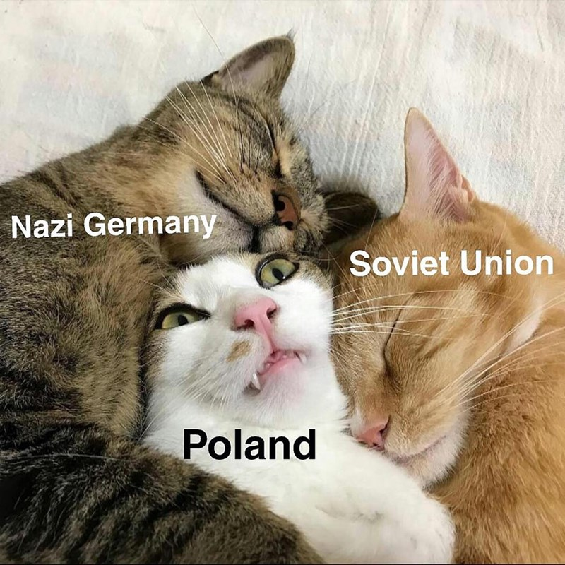 Cat - Nazi Germany Soviet Union Poland