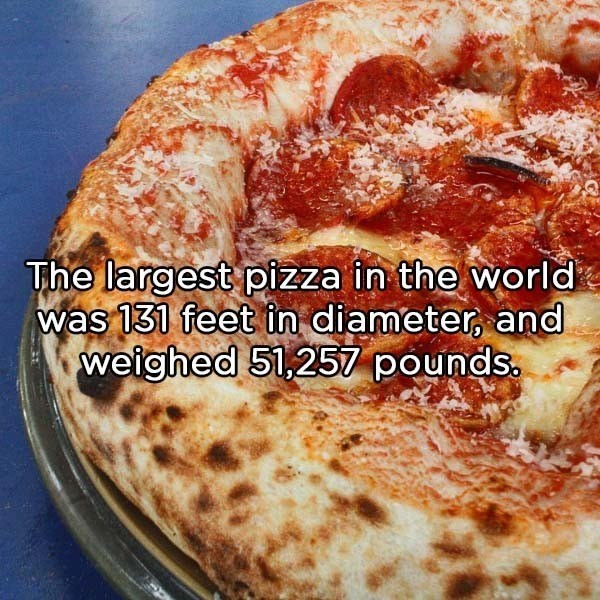 Dish - The largest pizza in the world was 131 feet in diameter, and weighed 51,257 pounds