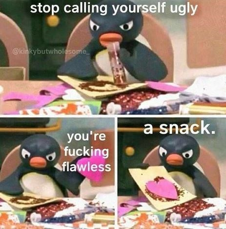 relationship meme - Bird - stop calling yourself ugly @kinkybutwholesome a snack. you're fucking flawless