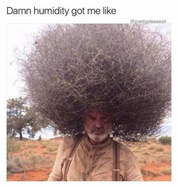 Hair - Damn humidity got me like Oprettypleasesir