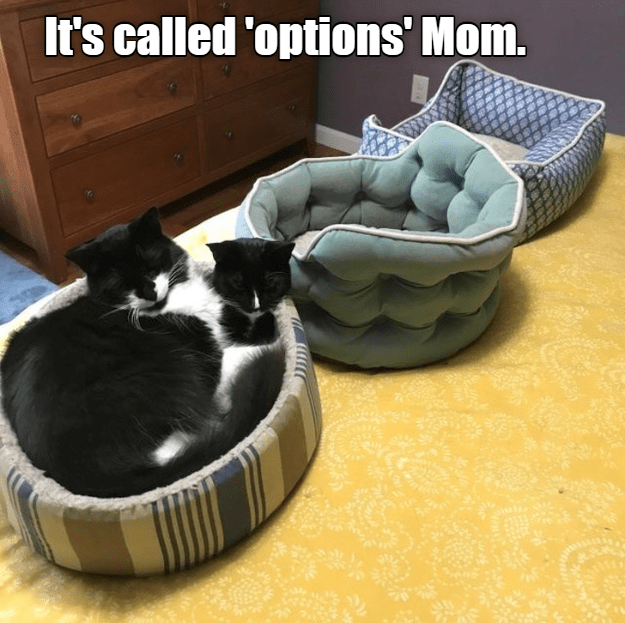 Cat - It's called 'options' Mom.