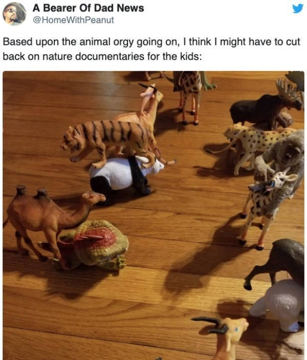Adaptation - A Bearer Of Dad News @HomeWithPeanut Based upon the animal orgy going on, I think I might have to cut back on nature documentaries for the kids: