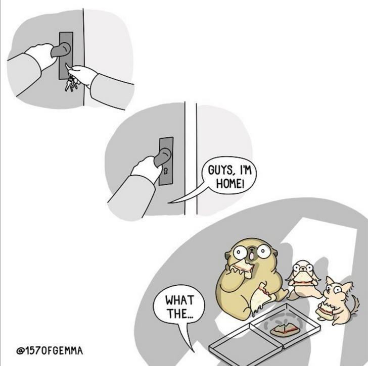 Cartoon - GUYS, I'M НОМЕ! WHAT THE... @1570FGEMMA