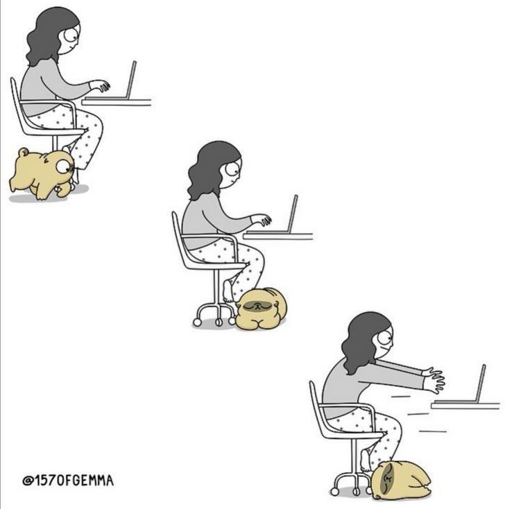Cartoon - @1570FGEMMA