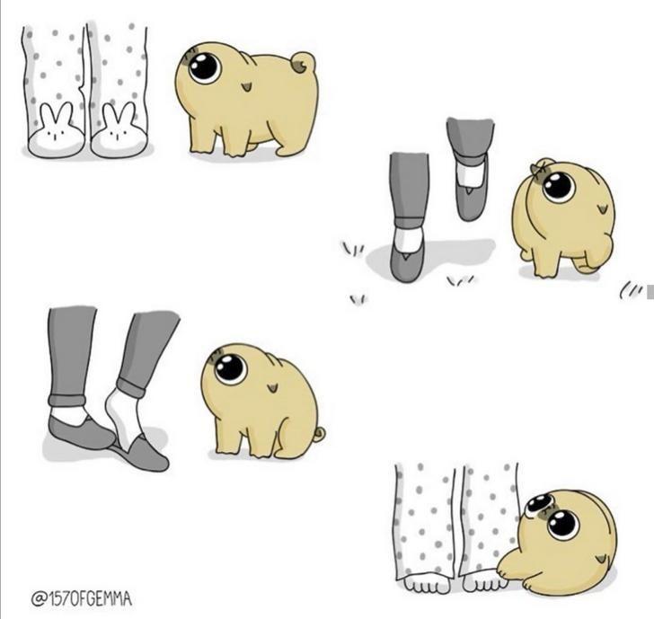 Cartoon - LLA Lil @1570FGEMMA
