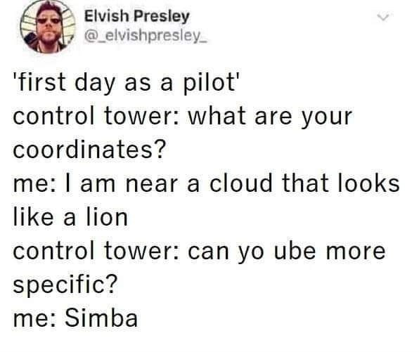 Text - Elvish Presley @elvishpresley first day as a pilot' control tower: what are your coordinates? me: I am near a cloud that looks like a lion control tower: can yo ube more specific? me: Simba