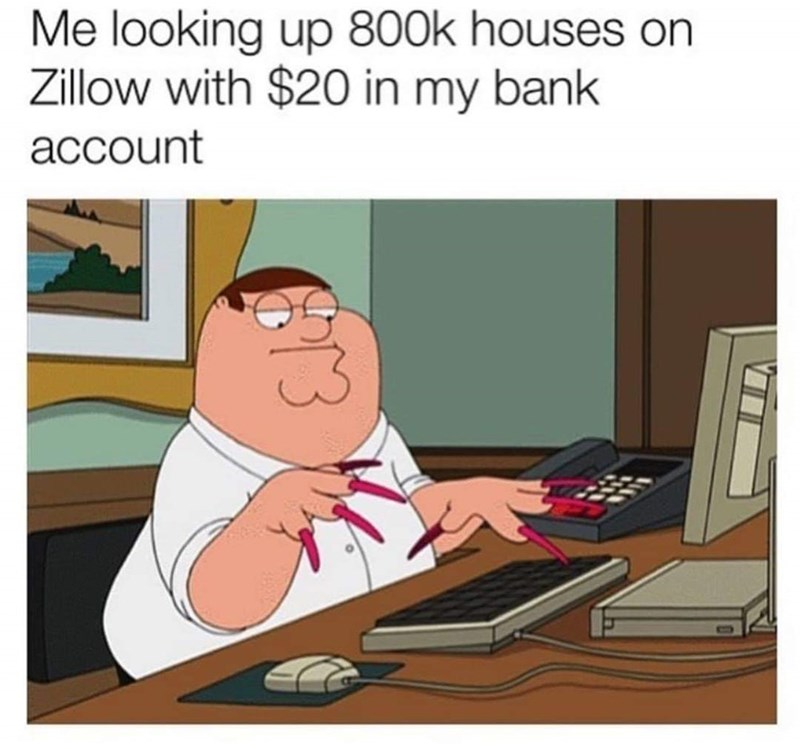 Cartoon - Me looking up 800k houses Zillow with $20 in my bank account