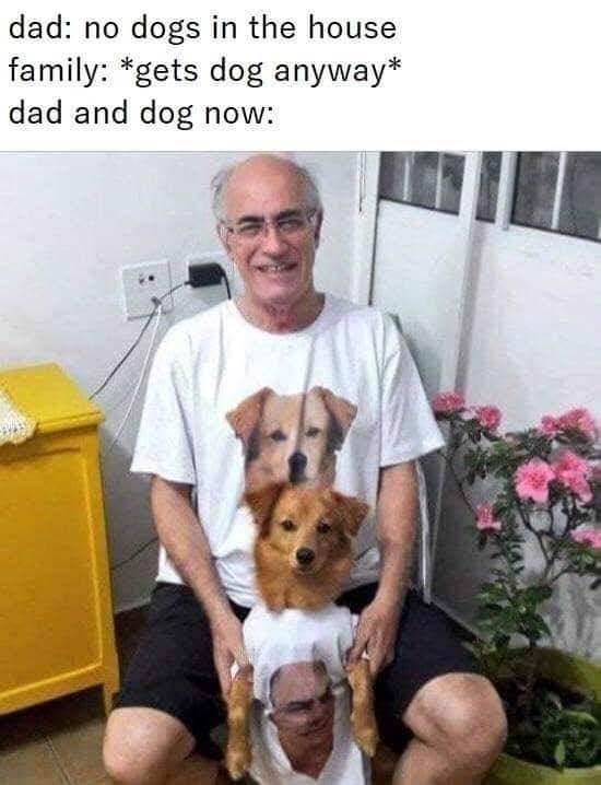 Mammal - dad: no dogs in the house family: *gets dog anyway* dad and dog now: