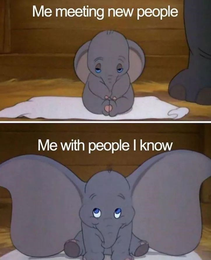 Elephant - Me meeting new people Me with people I know