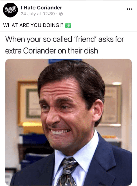 Photo caption - CORANDERHate Coriander 24 July at 02:39 WHAT ARE YOU DOING!? When your so called 'friend' asks for extra Coriander on their dish
