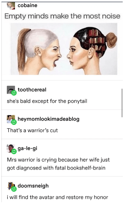 tumblr - Face - cobaine Empty minds make the most noise toothcereal she's bald except for the ponytail heymomlookimadeablog That's a warrior's cut ga-le-gi Mrs warrior is crying because her wife just got diagnosed with fatal bookshelf-brain doomsneigh i will find the avatar and restore my honor