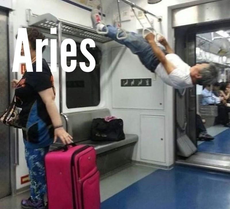 Transport - Transport - Aries