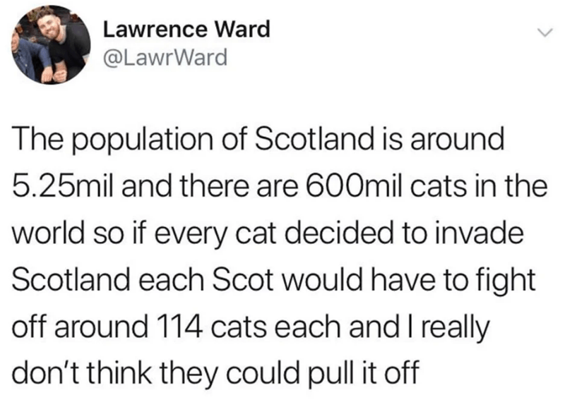 twitter - Text - Lawrence Ward @LawrWard The population of Scotland is around 5.25mil and there are 600mil cats in the world so if every cat decided to invade Scotland each Scot would have to fight off around 114 cats each and I really don't think they could pull it off