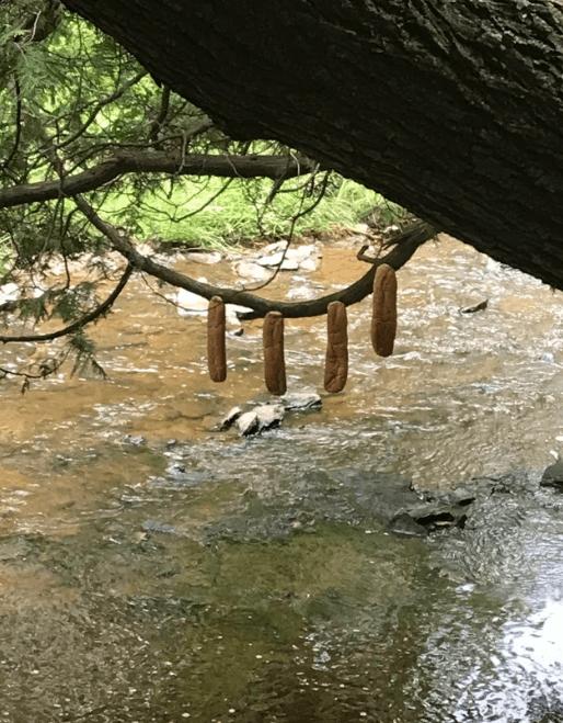 reddit - Water