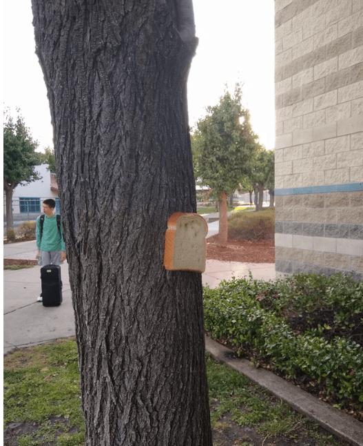 reddit - Tree