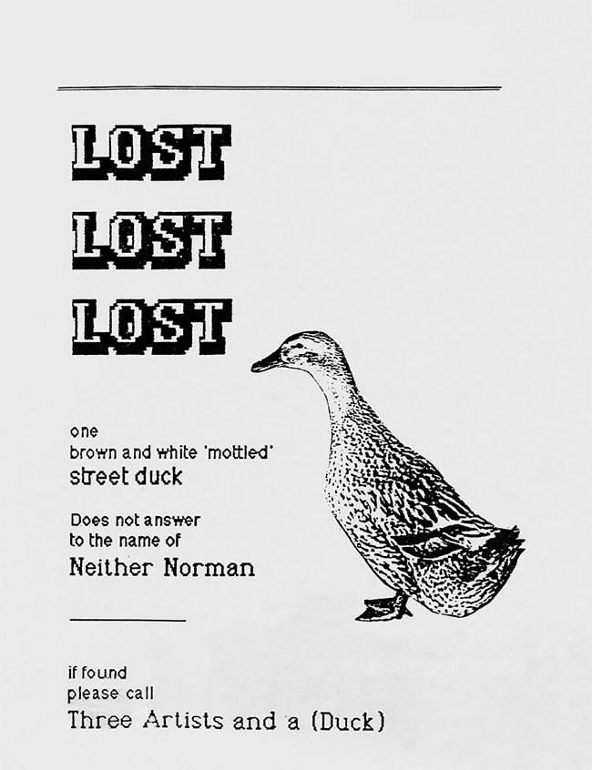Bird - LOST LOST LOST one brown and white 'mottled street duck Does not answer to the name of Neither Norman if found please call Three Artists and a (Duck)