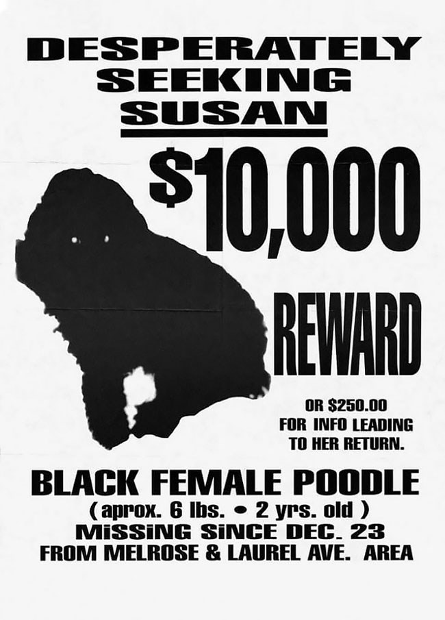 Text - DESPERATELY SEEκόMG SUSAN $10,000 REWARD OR $250.00 FOR INFO LEADING TO HER RETURN. BLACK FEMALE POODLE (aprox. 6 Ibs. 2 yrs. old MISSING SINCE DEC. 23 FROM MELROSE & LAUREL AVE. AREA