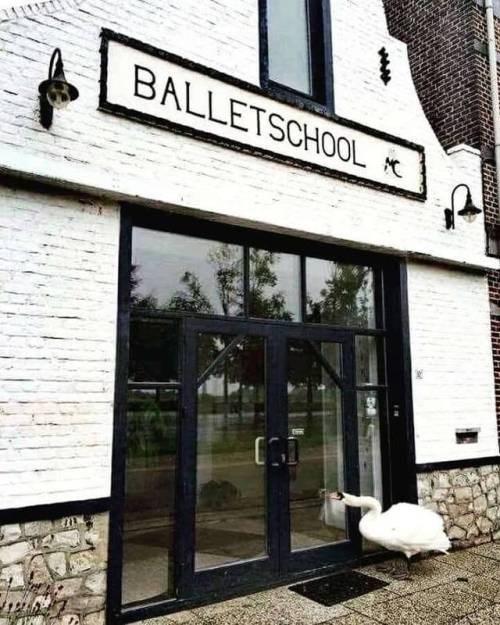 Property - BALLETSCHOOL
