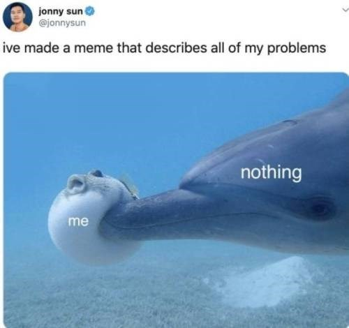 Dolphin - jonny sun @jonnysun ive made a meme that describes all of my problems nothing me