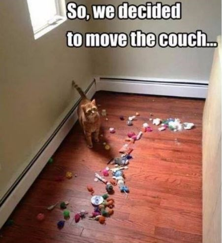 Floor - So, we decided to move the couch..