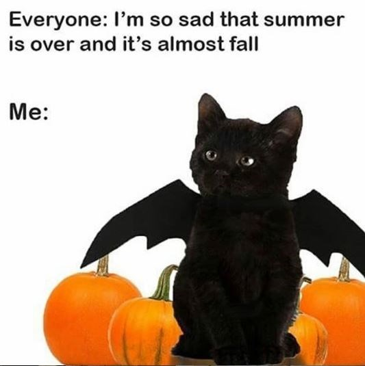 Cat - Everyone: I'm so sad that summer is over and it's almost fall Me: