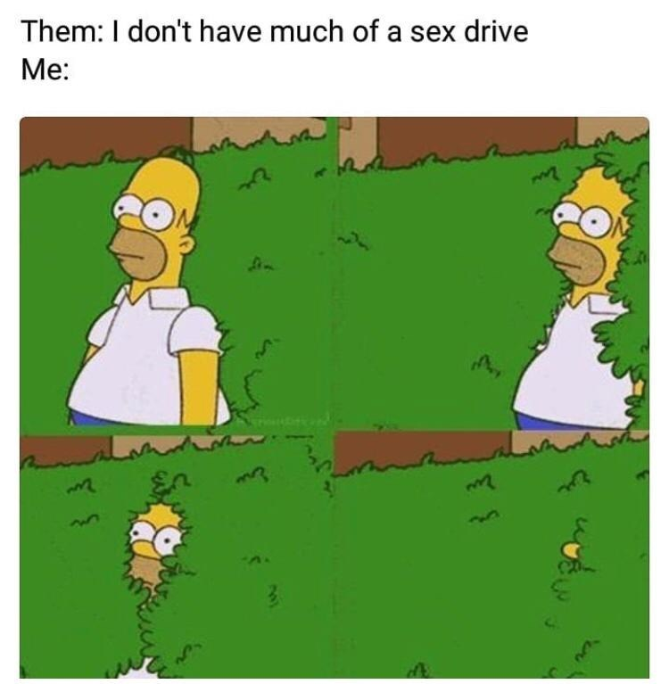Cartoon - Them: I don't have much of a sex drive Me: